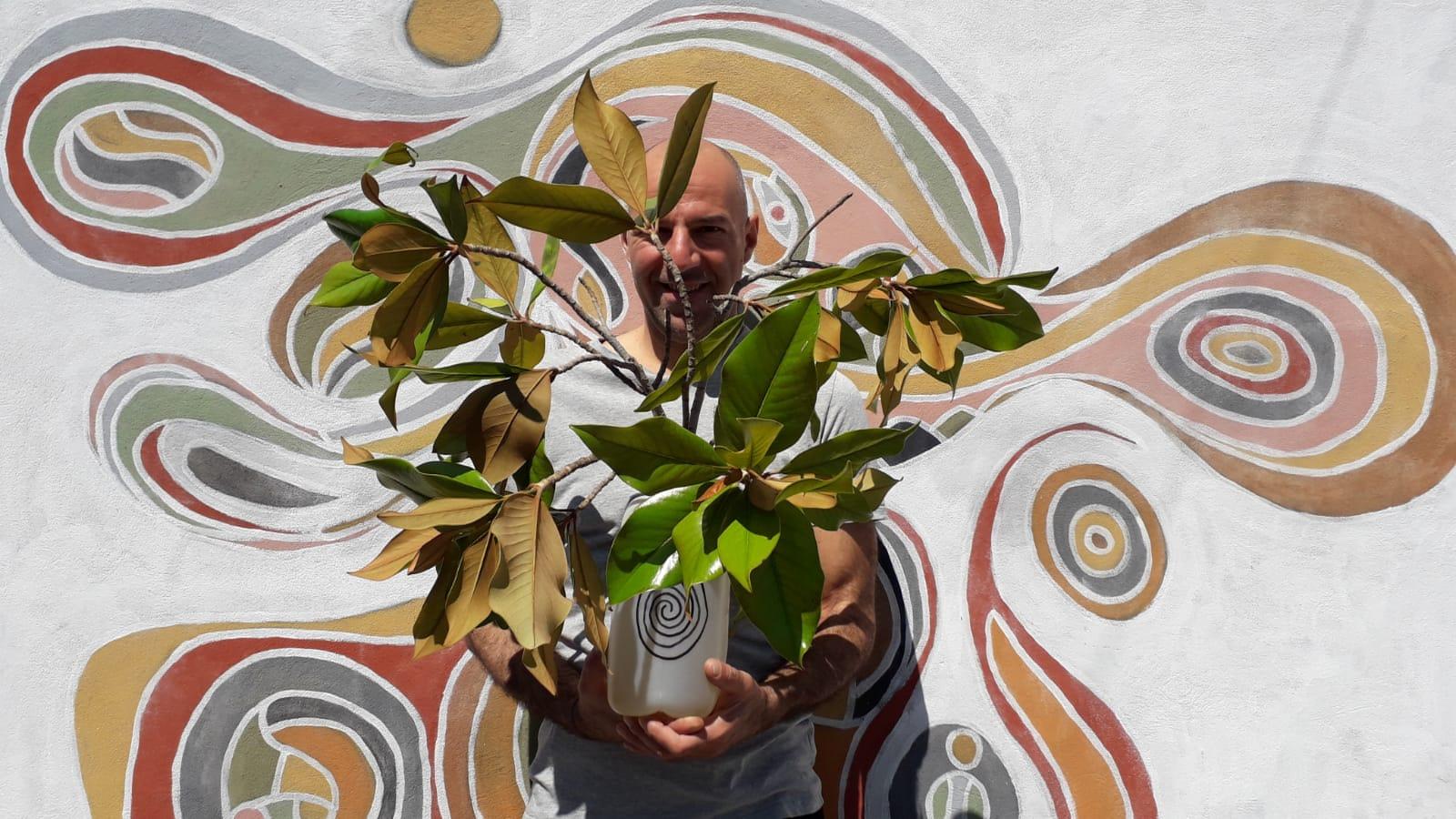 Catania, Piazza Roma Mettere in salvo rami strappati da qualche balordo. Magnolia