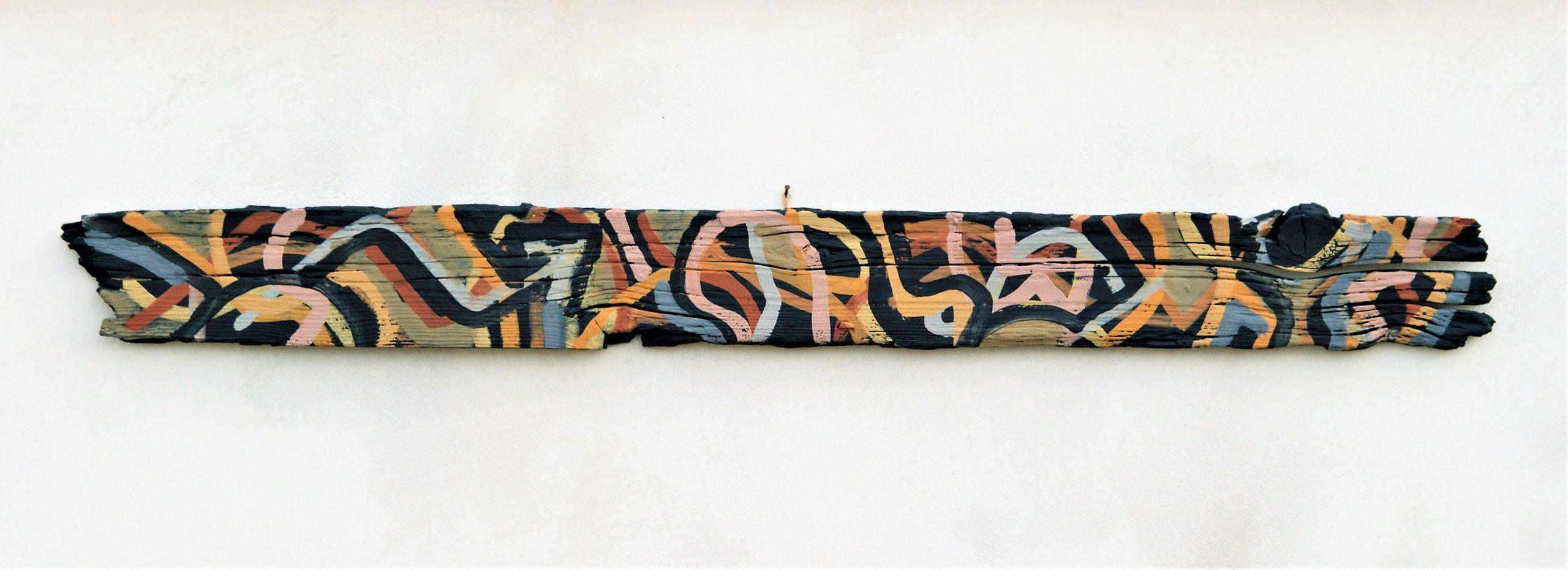 Salamandra – Nei legni di mare trovo la forza, la voglia di non lasciarsi andare, resistere per riconquistare. Posizione regge realizzazione, frazione di memoria messa in salvo. (Diario di una mente connessa)