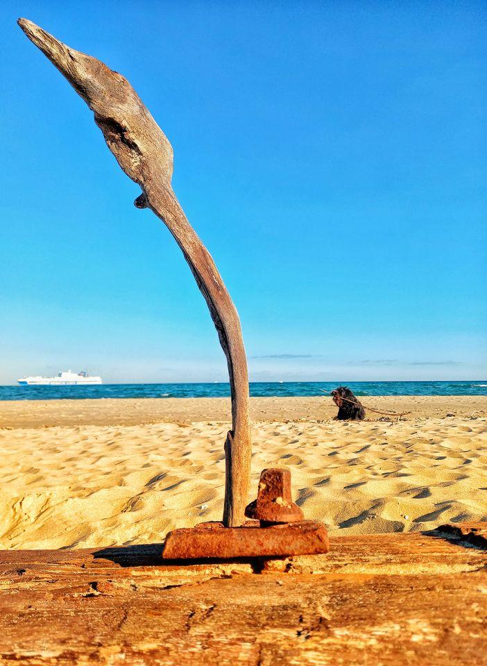 arte involontaria playa catania mia
