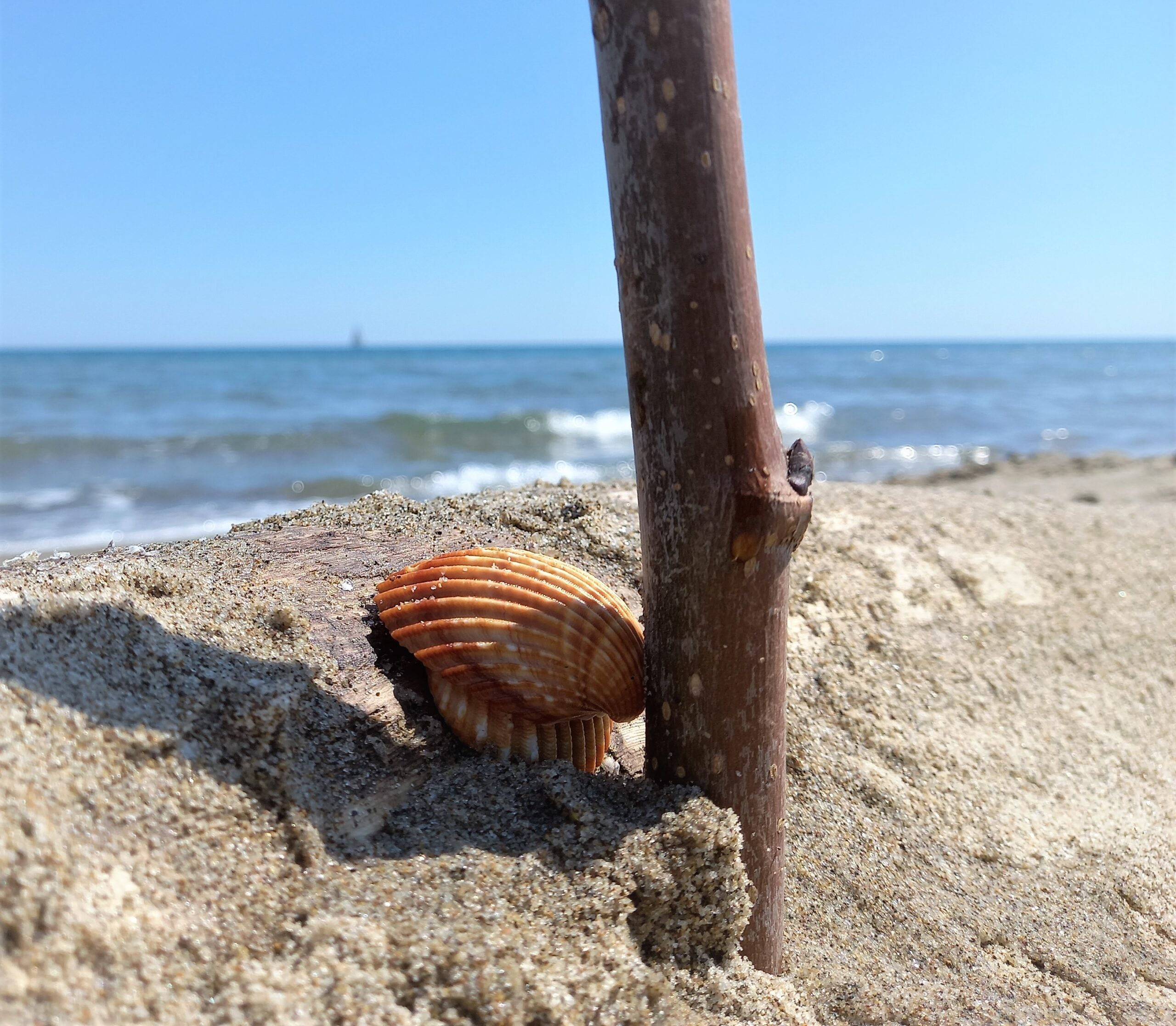 museo del mare sicily needs love